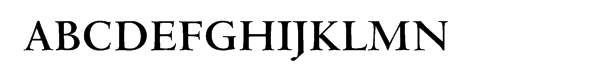 Venetian 301 Cyrillic Bold  Free Fonts Download